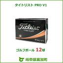 【ふるさと納税】ゴルフボール タイトリスト PRO V1 1