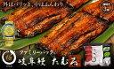 """【ふるさと納税】岐阜鰻たむろ""""極""""うなぎ3尾ファミリーパック..."""