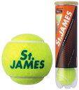 【ふるさと納税】硬式テニスボール1缶4球入り×15缶(60球)...