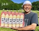 【ふるさと納税】山ちゃんの『甘酒』24本セット