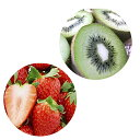 【ふるさと納税】年3回お届け!JAしみずの果物食べ比べコース...