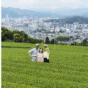 【ふるさと納税】エキスパート製茶工場見学(2名様分) 【体験チケット】