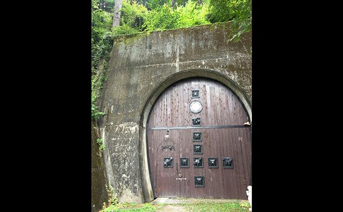 【ふるさと納税】鉄道トンネルを再利用した天然のワインセラーBラック200本1年 【イベントやチケット等・貯蔵】