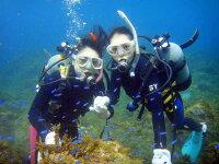 【ふるさと納税】日帰りでOK!伊東・城ヶ崎の海で1日体験ダイビング(1名様)の画像