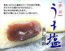 【ふるさと納税】氏原製菓 伊豆海塩セット