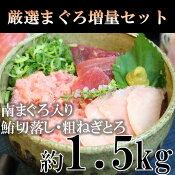 【ふるさと納税】c10-043 限定!マルコ水産・厳選まぐろセット増量1.5kg