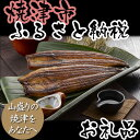 【ふるさと納税】001-033 静岡県産うなぎ長蒲焼UN122