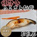【ふるさと納税】001-081 魚心漬 5種10切