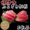 【ふるさと納税】001-243 まぐろの魚二厳選  天然南鮪中トロ赤身セット
