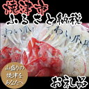 【ポイント10倍】【ふるさと納税】001-255 ズワイガニの爪(500g×2袋)