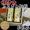 【ふるさと納税】002-003 JA大井川極上煎茶と玉露の詰め合わせ