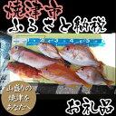 樂天商城 - 【ふるさと納税】030-007 遊漁船 一隻まるごと貸切券