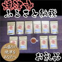 【ふるさと納税】001-331 烏龍茶ティーバッグ