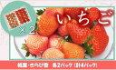 【キャンペーン】【ふるさと納税】001-724 いちご(桃薫...