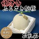 【ふるさと納税】005-117 クラウンメロン(富士)1玉