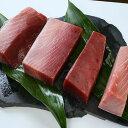 【ふるさと納税】a30-104 静岡県漁連 天然みなみまぐろ中トロ付柵 4柵コース