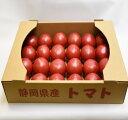【ふるさと納税】掛川で育った完熟桃太郎トマト 4kg