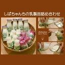 【ふるさと納税】しばちゃんちの乳製品詰合せ(牛乳×5、ヨーグ