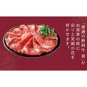 【ふるさと納税】静岡牛『葵』すき焼き肉 約700g 【牛肉・...