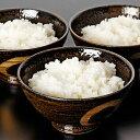 【ふるさと納税】非常食 白いご飯 10食セット  【お米・加...