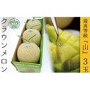 ショッピング肉 【ふるさと納税】クラウンメロン(山級)3玉 ギフト箱入り 【果物・マスクメロン・青肉】