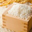【ふるさと納税】農家のつくったおいしいお米 にこまる【食味ランキング「特A」品種】 10kg 【米/にこまる】