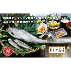 【ふるさと納税】B−18 静岡県食セレクション認定、天城紅姫あまごを食べ尽くす!!あまご食・体験チケット