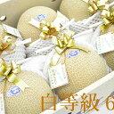 【ふるさと納税】御前崎市産アローマメロン(白)6玉入り 【果物類・メロン青肉】