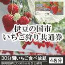 【ふるさと納税】020-002 伊豆の国市いちご狩り共通券(4名様分)