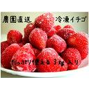 【ふるさと納税】冷凍イチゴたっぷり3キロ入り