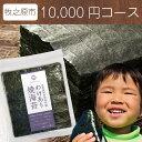 【ふるさと納税】有明産「訳あり上級焼き海苔」たっぷり160枚...