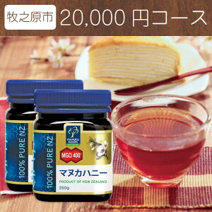 【ふるさと納税】マヌカハニーと牧之原紅茶セット