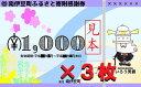 【ふるさと納税】[Za-01]南伊豆町ふるさと寄附感謝券3枚