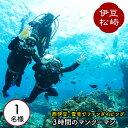 【ふるさと納税】雲見で体験ダイビング