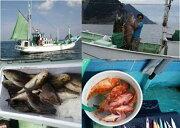 【ふるさと納税】半日釣り体験(4名様分)