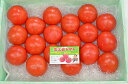 【ふるさと納税】A3 金太郎トマト1箱
