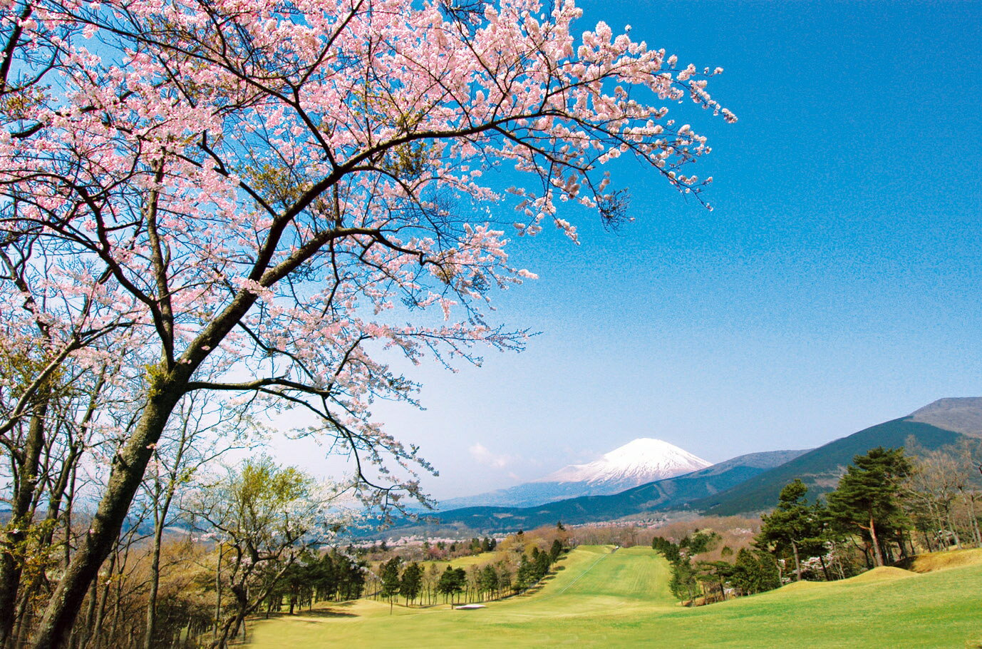 【ふるさと納税】B7 東富士C・Cゴルフプレー利用券 2枚