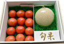 【ふるさと納税】B22 日本一美味しいクラウンメロンと小山町特産金太郎トマトセット