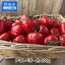 【ふるさと納税】【お試し】甘さ抜群!!トマト嫌いも食べられるトマトベリー