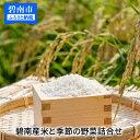 【ふるさと納税】碧南産米と季節の野菜詰合せ