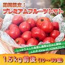 【ふるさと納税】期間限定!プレミアムフルーツトマト