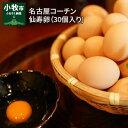 【ふるさと納税】名古屋コーチン卵(30個入り)