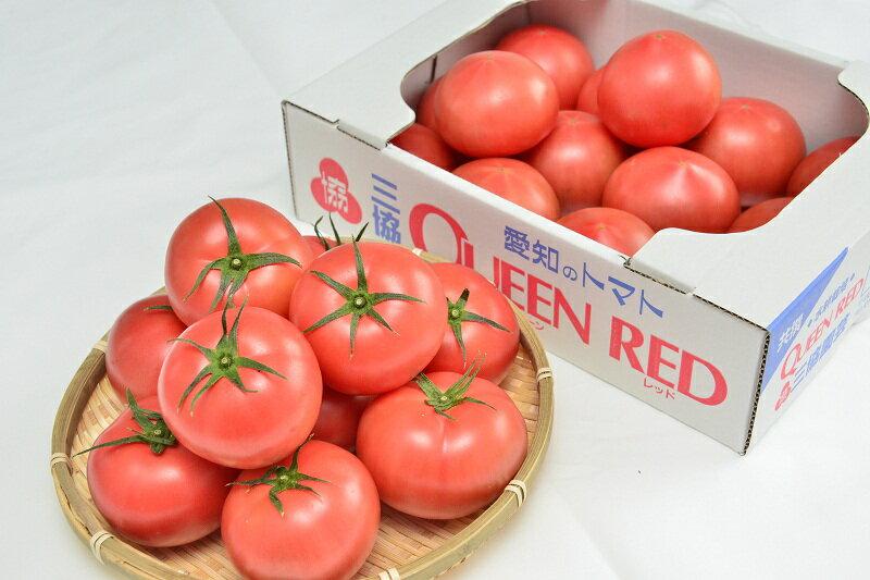 【ふるさと納税】水耕栽培トマト(大玉)の商品画像