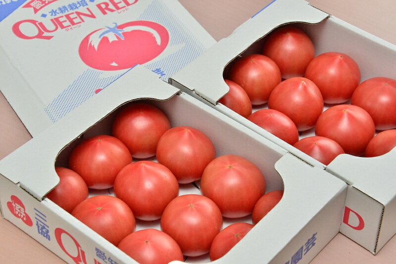 【ふるさと納税】水耕栽培トマト(大玉)の紹介画像2