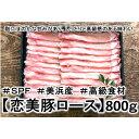 【ふるさと納税】大盛1.6キロ!の【しゃぶしゃぶ】ブランド豚...