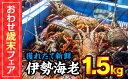 【ふるさと納税】MT-1【おわせ歳末フェア】活 伊勢海老 1...