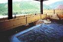 【ふるさと納税】入鹿温泉ホテル瀞流荘1泊2食ペア宿泊券
