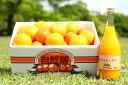 【ふるさと納税】自然塾 みかん&まるごと果汁詰合せ1回