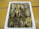 【ふるさと納税】三重県産 的矢漁協かき セル30個入り