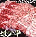 【ふるさと納税】厳選 近江牛肉 カルビ 焼肉 500g 【牛...